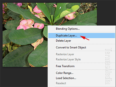 Cara menduplikasi layer di Adobe Photoshop